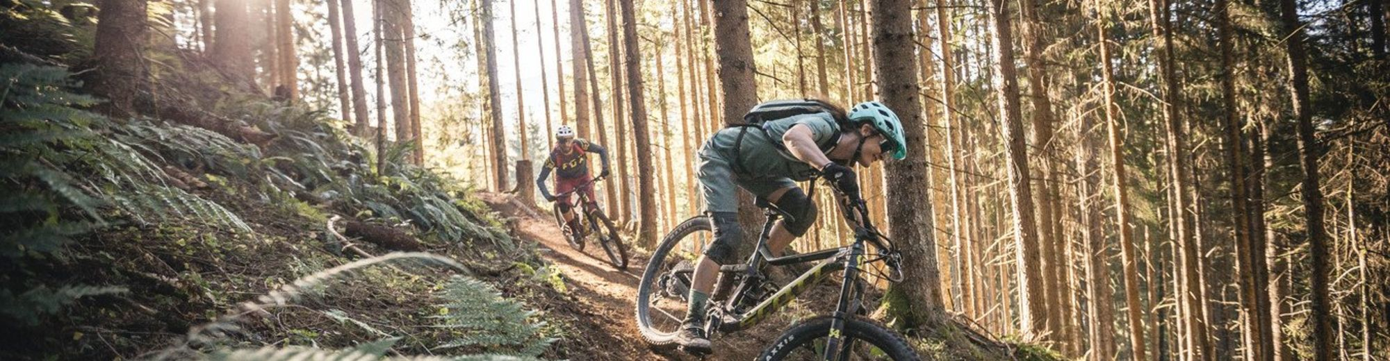 Trail in Leogang